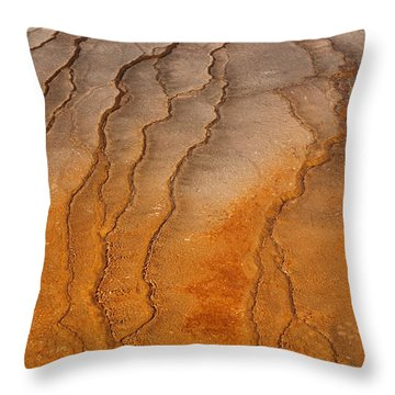 Yellowstone 2530 Throw Pillow