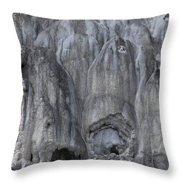 Yellowstone 3683 Throw Pillow