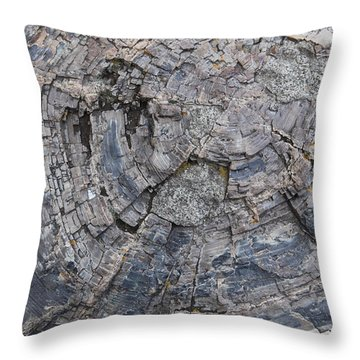 Yellowstone 3707 Throw Pillow