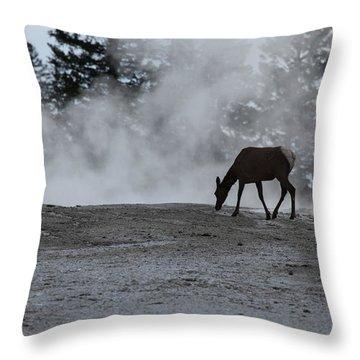 Yellowstone 5456 Throw Pillow