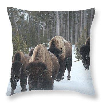 Yellowstone Buffalo Herd  Throw Pillow