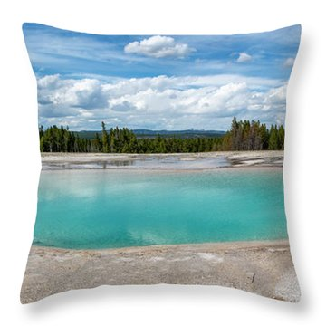Throw Pillow featuring the photograph Yellowstone Colors #11 by Scott Read