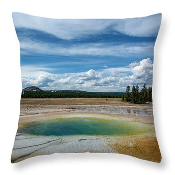 Throw Pillow featuring the photograph Yellowstone Colors #12 by Scott Read
