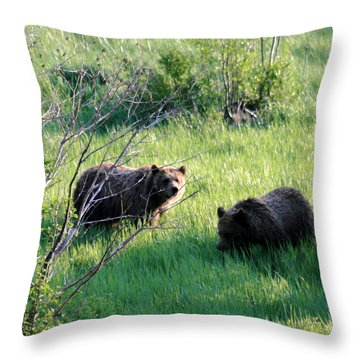 Yellowstone Grizzlies Throw Pillow by George Jones