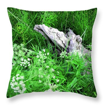 Yellowstone Lace Throw Pillow