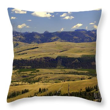Yellowstone Landscape 2 Throw Pillow by Marty Koch