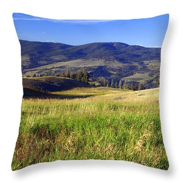 Yellowstone Landscape 3 Throw Pillow by Marty Koch