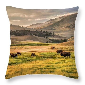 Yellowstone National Park Lamar Valley Bison Grazing Throw Pillow