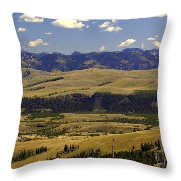Yellowstone Vista Throw Pillow by Marty Koch
