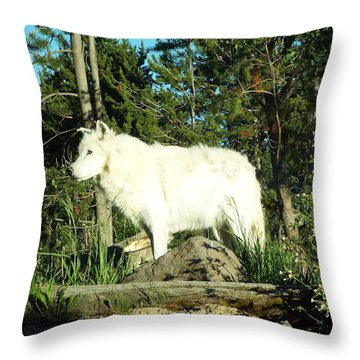Yellowstone Wolf Pack Member Throw Pillow