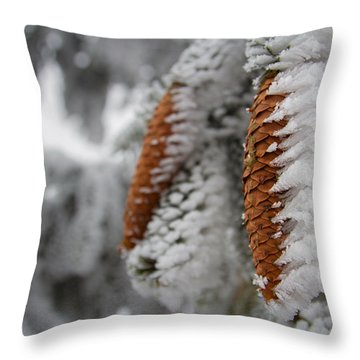 Yep, It's Winter Throw Pillow