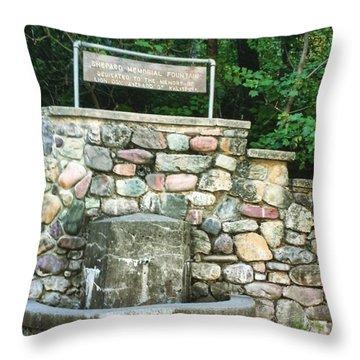 Shepherd Fountain Throw Pillow