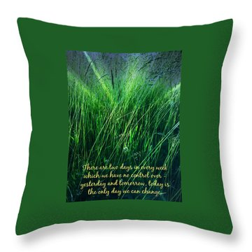 Yesterday And Tomorrow Throw Pillow