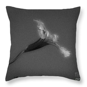 Yesterday Single Throw Pillow