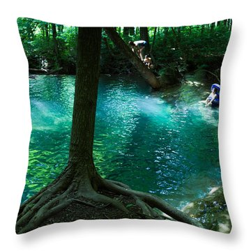 Yesterday, When I Was Young Throw Pillow