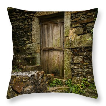 Yesterday's Garden Door Throw Pillow