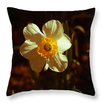 Yesteryear Daffodil Throw Pillow