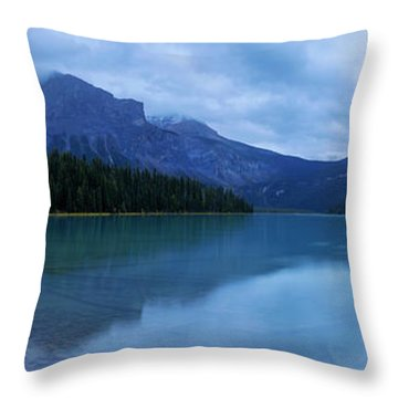 Throw Pillow featuring the photograph Yoho by Chad Dutson