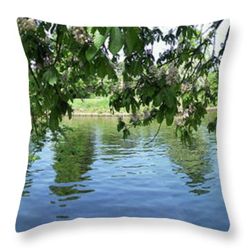 York River Ouse Throw Pillow by Neil Finnemore