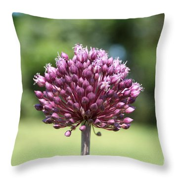 Throw Pillow featuring the photograph Yorktown Onion by John Black
