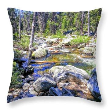 Yosemite Boulder Stream Throw Pillow
