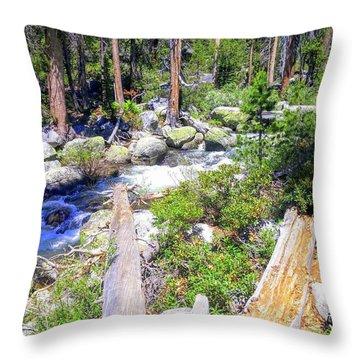 Yosemite Adventure Throw Pillow