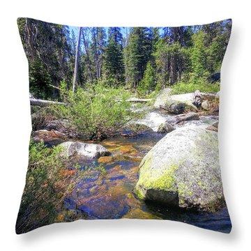 Yosemite Hidden Stream Throw Pillow