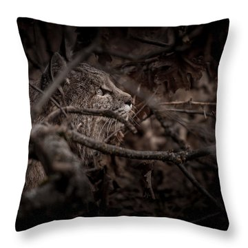 Yosemite Bobcat  Throw Pillow