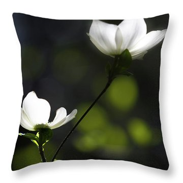 Yosemite Dogwoods 2 Throw Pillow