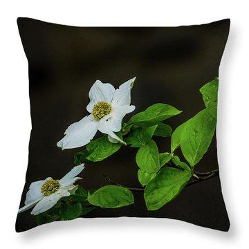 Yosemite Dogwoods Throw Pillow