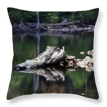 Yosemite In October Throw Pillow