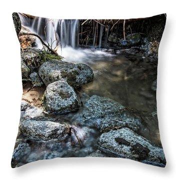 Yosemite View 17 Throw Pillow by Ryan Weddle