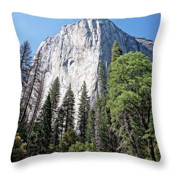 Captain Throw Pillow by Ryan Weddle