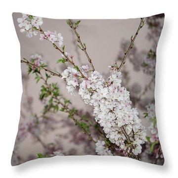 Yoshino Cherries Lavender Throw Pillow