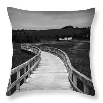 You Always Bring Me Back Home Throw Pillow