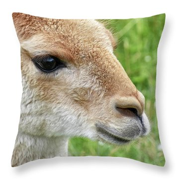 You Can Call Me Al Throw Pillow