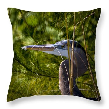 You Can't See Me Throw Pillow by Marvin Spates