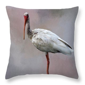 You Lookin' At Me? Throw Pillow by Cyndy Doty