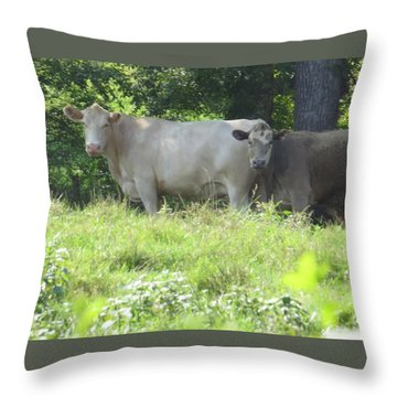 Throw Pillow featuring the photograph You Looking At Us by Aaron Martens