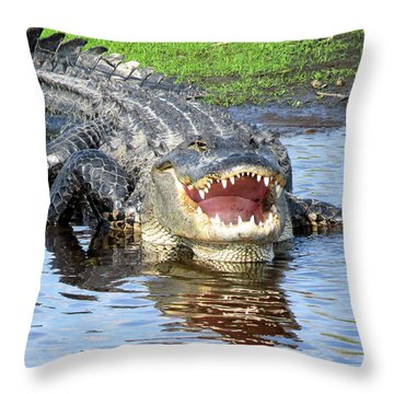 You May Think I'm Smiling Throw Pillow