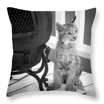 Throw Pillow featuring the photograph You Say Somethin by Tim Newton