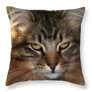 You Think Throw Pillow by Shari Nees