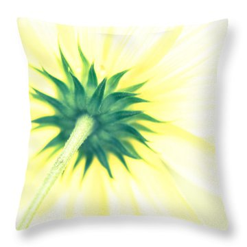 You Were Gonna Set The World On Fire Throw Pillow by Wade Brooks