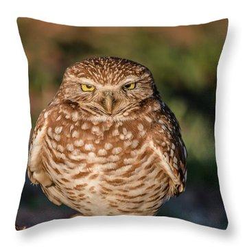 You Woke Me Up Throw Pillow