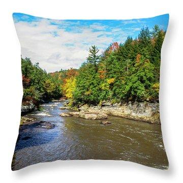 Swallow Falls State Park Throw Pillows
