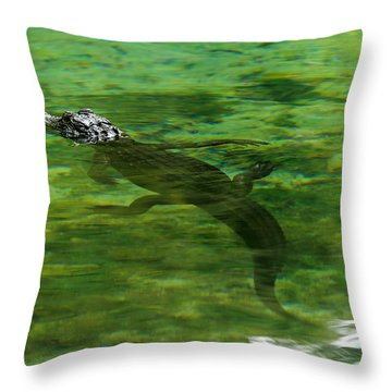 Young Alligator Throw Pillow