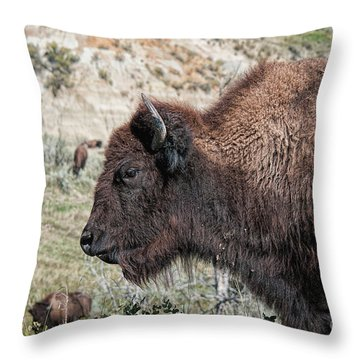 Young Bison Throw Pillow