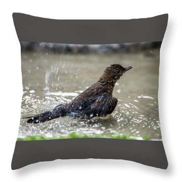 Throw Pillow featuring the photograph Young Blackbird's Bath by Torbjorn Swenelius