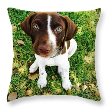 Young Blue Eyes Throw Pillow