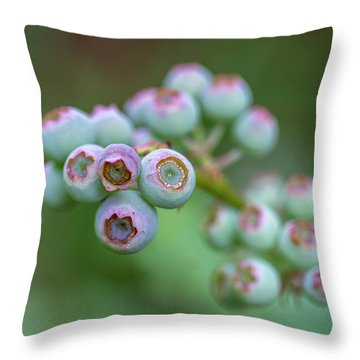 Young Blueberries Throw Pillow